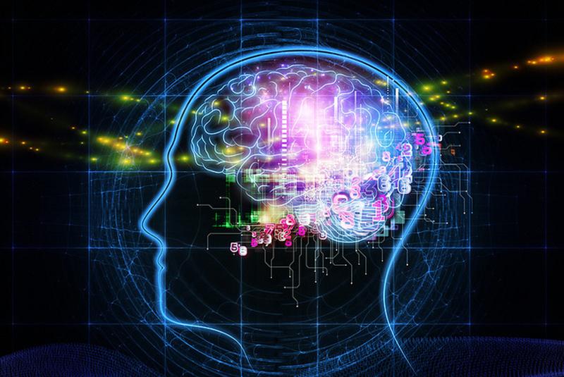 Neurolinguistic Programming Perspective on Intelligence